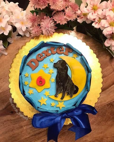 Night Sky Cake Night Sky Cake